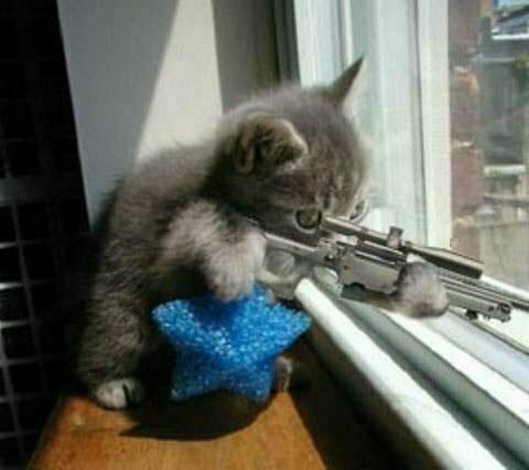 Chat killer